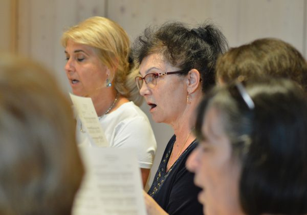 Why choir vocal training?